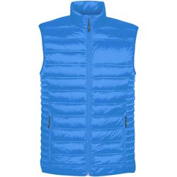 textil Herre Veste / Cardigans Stormtech ST158 Electric Blue