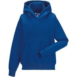 textil Børn Sweatshirts Jerzees Schoolgear 575B Bright Royal
