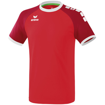 textil Herre T-shirts m. korte ærmer Erima Maillot  Zenari 3.0 rouge/blanc