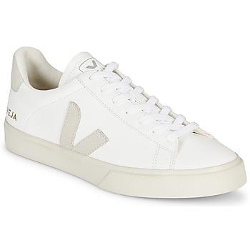 Sko Lave sneakers Veja CAMPO Hvid / Grå