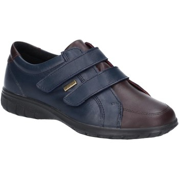 Sko Dame Lave sneakers Cotswold  Navy/Brown