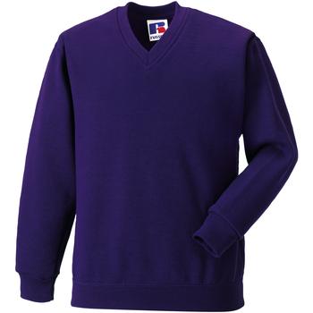 textil Børn Sweatshirts Jerzees Schoolgear 272B Purple