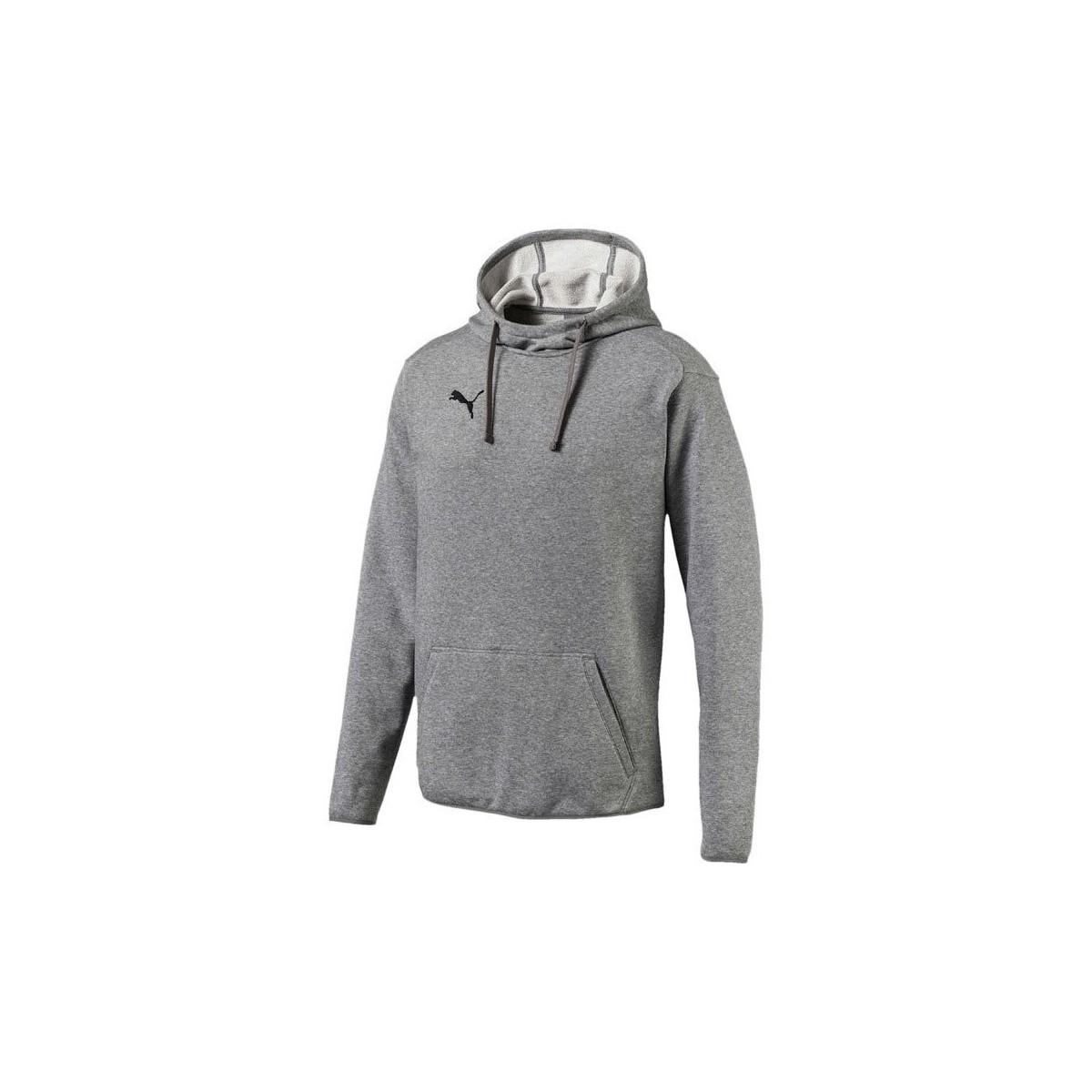 Sweatshirts Puma  Liga Casuals Hoody