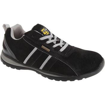 Sko Herre Lave sneakers Grafters  Black/Grey