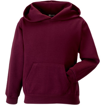textil Børn Sweatshirts Jerzees Schoolgear 575B Burgundy