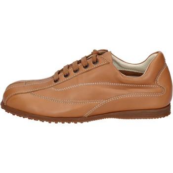 Sko Herre Lave sneakers Hogan Sneakers BN129 Brun
