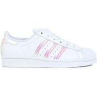 Sko Børn Lave sneakers adidas Originals Superstar J Hvid
