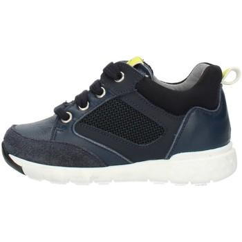 Sko Børn Høje sneakers Nero Giardini A923730M Blue