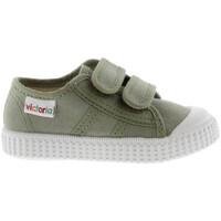 Sko Børn Lave sneakers Victoria 136606 Grøn