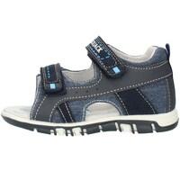 Sko Børn Sandaler Lumberjack SB42106005X84 Blue