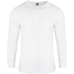 textil Herre Langærmede T-shirts Floso  White