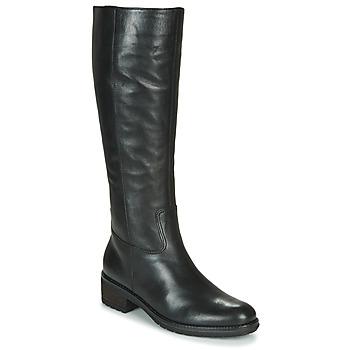 Sko Dame Chikke støvler Gabor 5161527 Sort