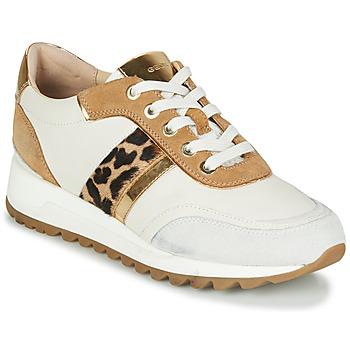 Sko Dame Lave sneakers Geox TABELYA Hvid / Leopard