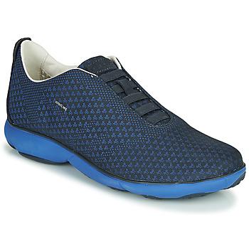 Sko Herre Lave sneakers Geox NEBULA Blå