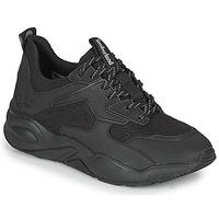 Sko Dame Lave sneakers Timberland DELPHIVILLETEXTILESNEAKER Sort