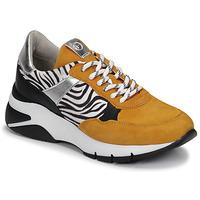 Sko Dame Lave sneakers Tamaris ELLE Sennep / Sort / Zebra