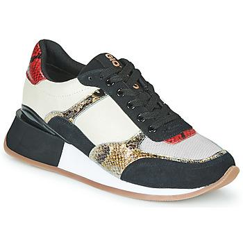 Sko Dame Lave sneakers Gioseppo KIROV Sort / Hvid