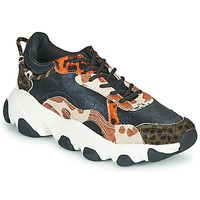 Sko Dame Lave sneakers Gioseppo ALEKSIN Sort / Orange