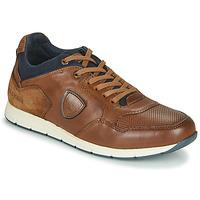 Sko Herre Lave sneakers Redskins SARIETTE Cognac