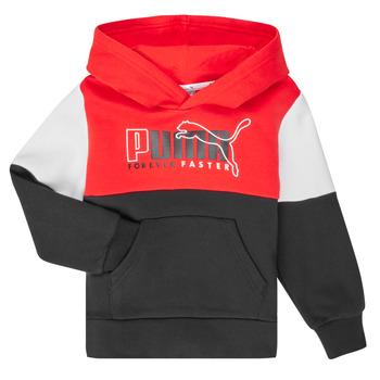 textil Dreng Sweatshirts Puma ALPHA HOODY Flerfarvet