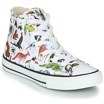 Sko Børn Høje sneakers Converse CHUCK TAYLOR ALL STAR - SCIENCE CLASS Hvid / Flerfarvet