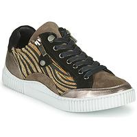 Sko Dame Lave sneakers Regard IDEM V6 CRIS TAUPE Brun