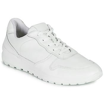 Sko Herre Lave sneakers Casual Attitude NOUCHE Hvid