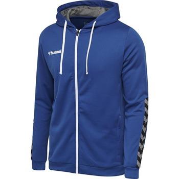 textil Børn Sweatshirts Hummel Sweatshirt enfant  zip hmlAUTHENTIC Poly bleu