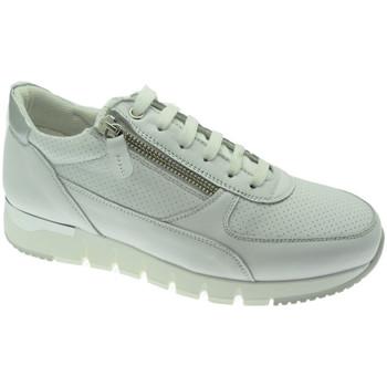 Sko Dame Lave sneakers Melluso MW09730GDbia bianco