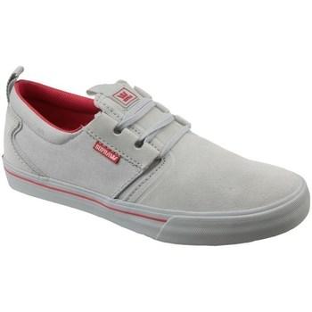 Sko Herre Lave sneakers Supra Flow Grå