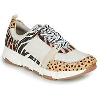 Sko Dame Lave sneakers Gioseppo CREAZZO Leopard