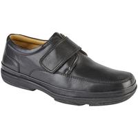 Sko Herre Lave sneakers Roamers  Black