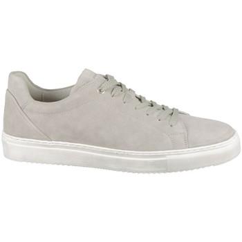 Sko Herre Lave sneakers Sioux Tils Beige
