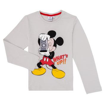 textil Dreng Langærmede T-shirts TEAM HEROES  MICKEY Grå