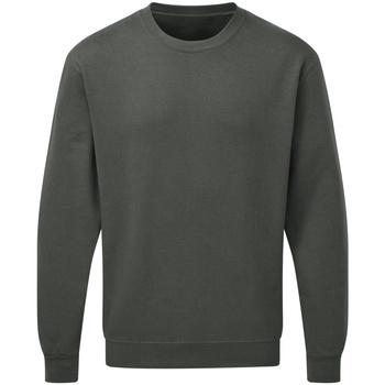 textil Herre Sweatshirts Sg SG20 Charcoal