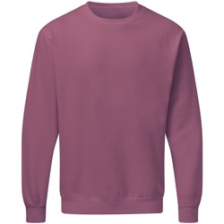 textil Herre Sweatshirts Sg SG20 Cassis