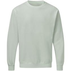 textil Herre Sweatshirts Sg SG20 Mercury