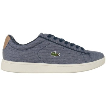 Sko Dame Lave sneakers Lacoste Carnaby Evo Grå