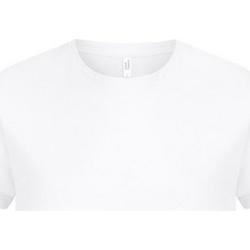 textil Herre T-shirts m. korte ærmer Casual Classics  White
