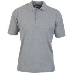 textil Herre Polo-t-shirts m. korte ærmer Casual Classics  Sport Grey