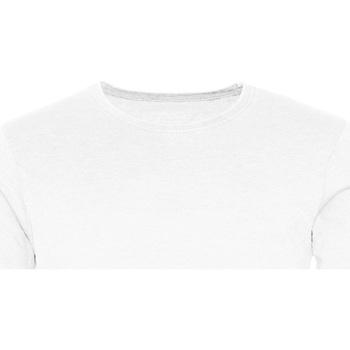 textil Herre T-shirts m. korte ærmer Awdis JT099 Washed Arctic