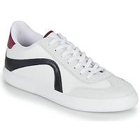 Sko Herre Lave sneakers André POLO Hvid