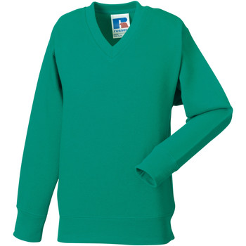 textil Børn Sweatshirts Jerzees Schoolgear 272B Winter Emerald