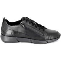 Sko Sneakers TBS Freeman Noir Sort