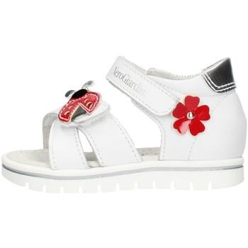 Sko Pige Chikke støvler Nero Giardini E021470F White