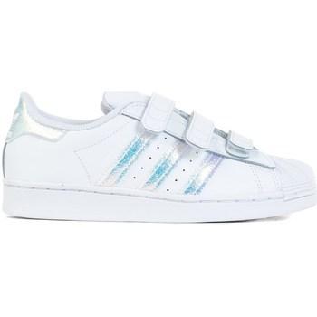 Sko Børn Lave sneakers adidas Originals Superstar CF C Hvid