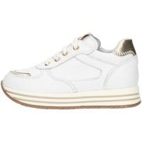 Sko Pige Høje sneakers Nero Giardini I021525F White