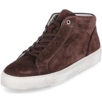 Sko Herre Høje sneakers Sioux 38192 Brun