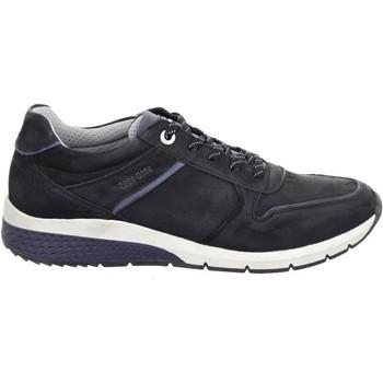 Sko Herre Lave sneakers Salamander Tonjo Black Sort