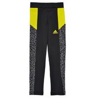 textil Pige Leggings adidas Performance G LEO TIG Sort